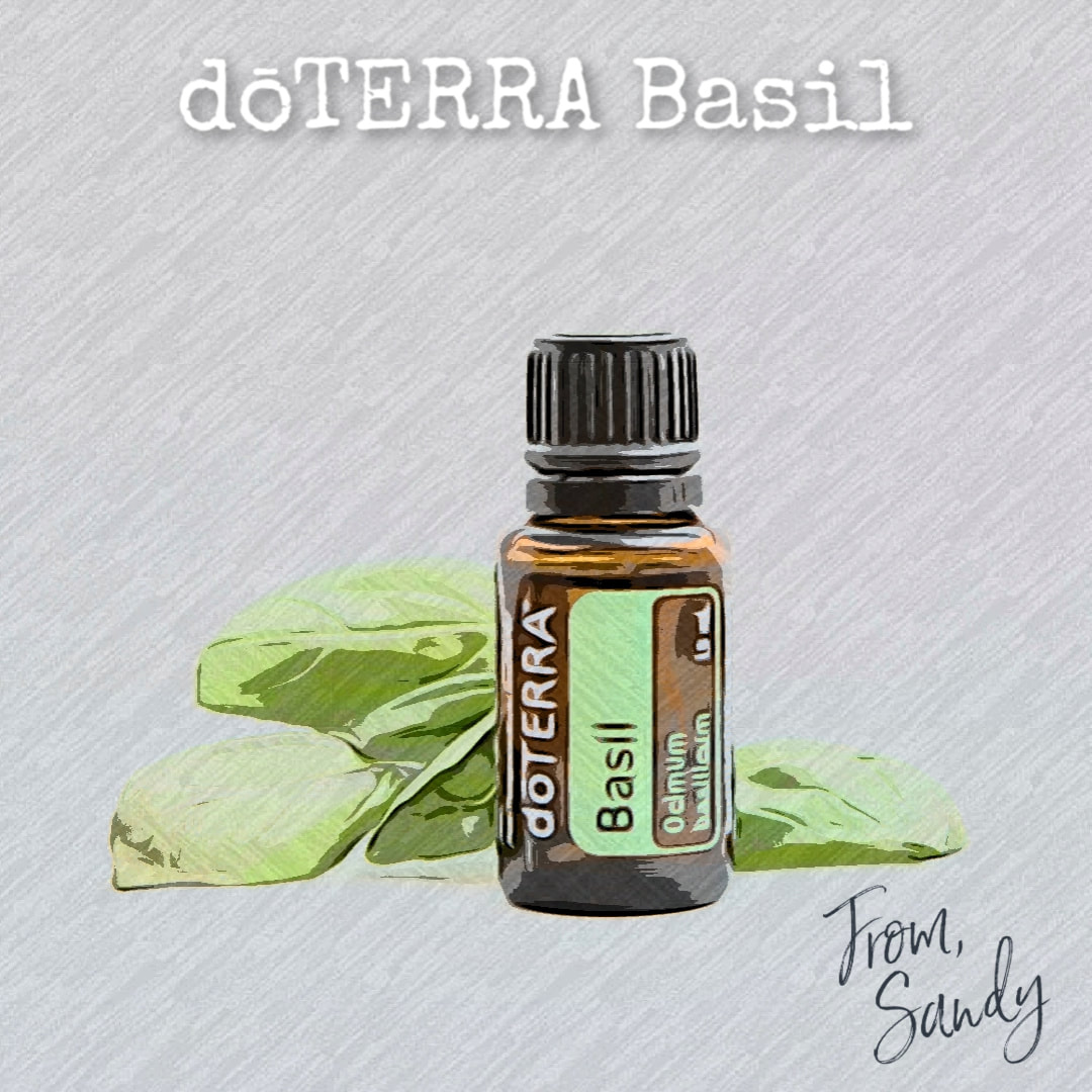 Learn about Basil Essential Oil, From Sandy