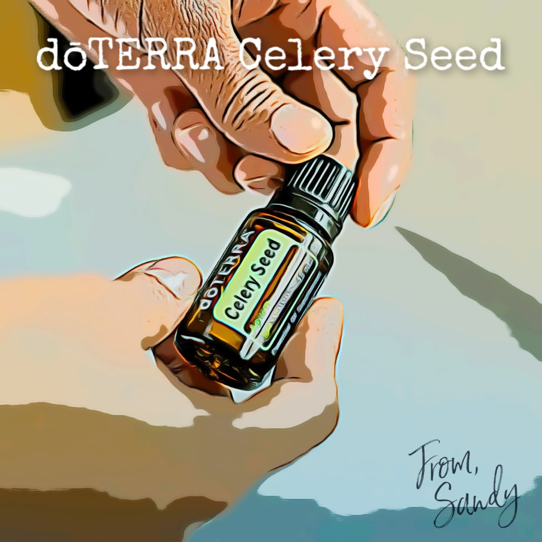 Learn about Celery Seed Essential Oil, From Sandy