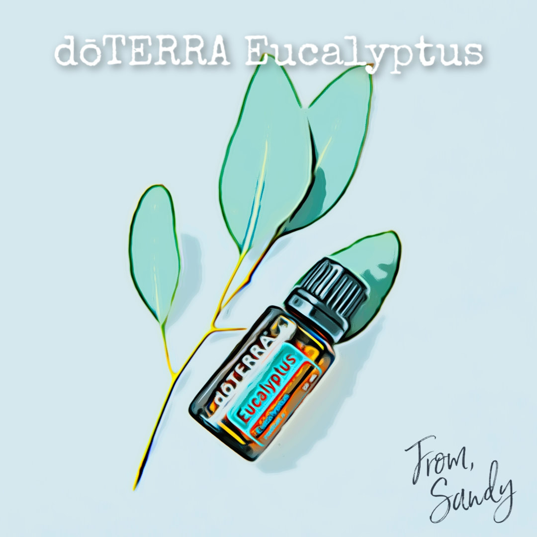 Learn more about Eucalyptus Essential Oil, From Sandy