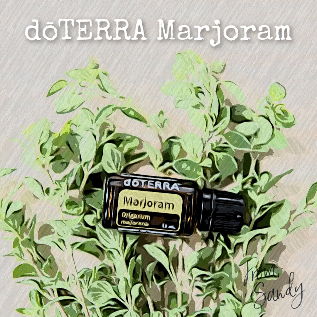 Learn more about Marjoram Essential Oil, From Sandy