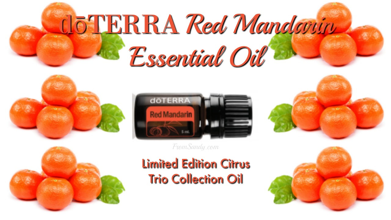 Learn about Red Mandarin Essential Oil, From Sandy