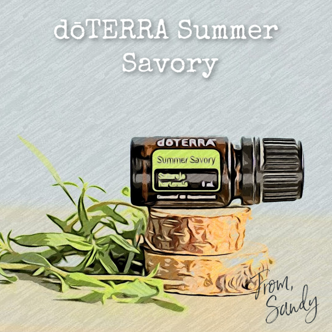 Learn about Summer Savory Essential Oil, From Sandy