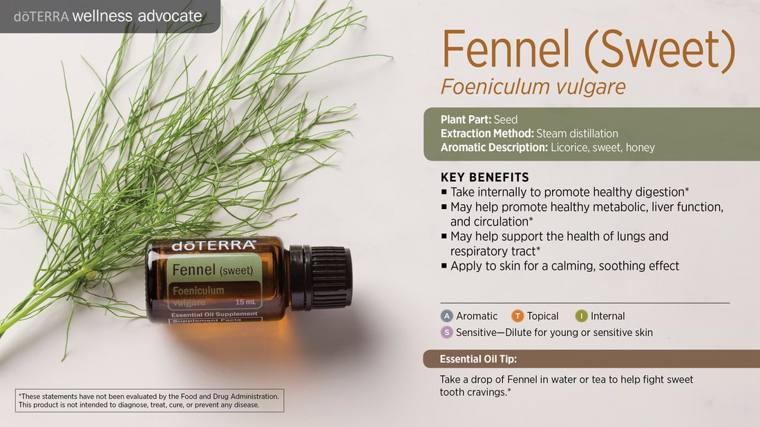 Learn about Fennel Essential Oil, From Sandy
