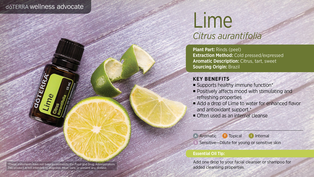 Learn about Lime Essential Oil, From Sandy