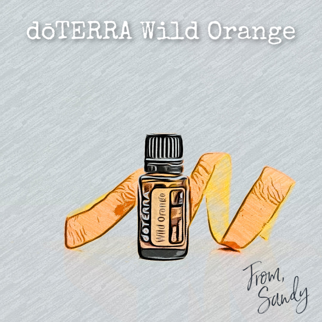 Learn more about Wild Orange Essential Oil, From Sandy
